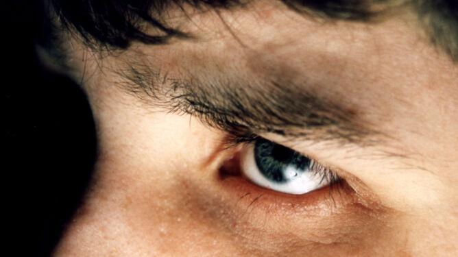 Im ciemniej i zimniej, tym mózg i oczy większe