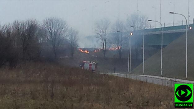 Znów pożary w okolicach stołecznych mostów
