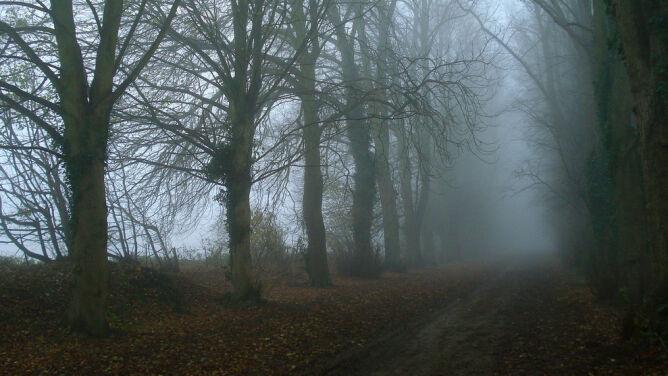 Mgły utrzymują się nad całym krajem