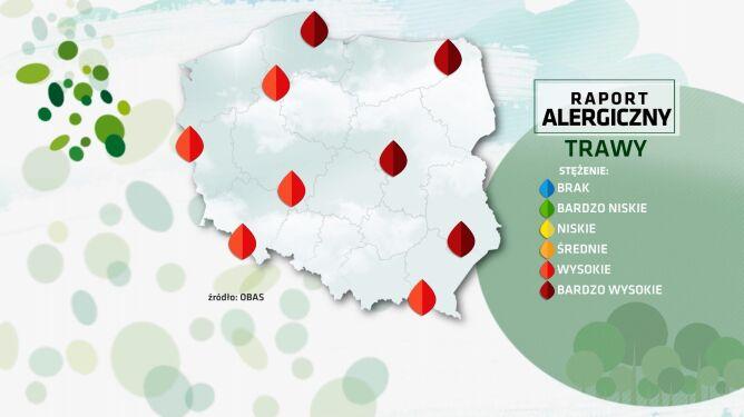 Raport alergiczny. Nadal uciążliwe pylenie traw